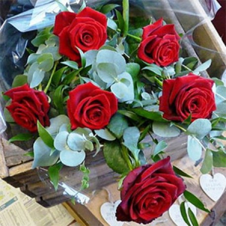 Six Red Roses